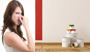 xử lý mùi sơn nhà mới