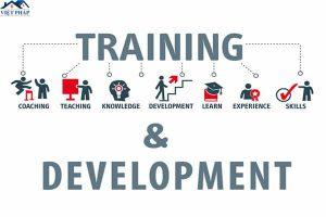 Training là gì? Training được thực hiện theo những hình thức nào?